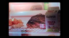 ❤❤I shot this little musical film in my kitchen over a few weeks in late 2011. It is the result of my passion for beautiful sad opera songs and my interest in the tragic destiny of a fish.   It's been in festivals this year, touring Annecy, Hiroshima, Ottawa, Telluride and more. It is also part of the 14th Animation Show of Shows. You can visit the blog for more making of pics and film info : http://furtivalagrimafilm.blogspot.com/