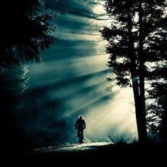 Zijlicht: het licht dat van opzij komt. Hierbij worden de schaduwen duidelijk zichtbaar. Je ziet de plasticiteit van dingen heel goed.