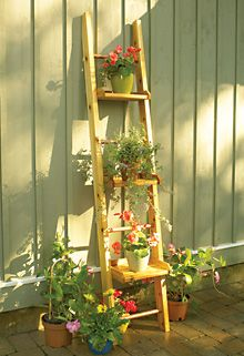 Plant Ladder - variation with a 4x4 block plank across the top?  In case my HOA complains about my window boxes on the back fence...