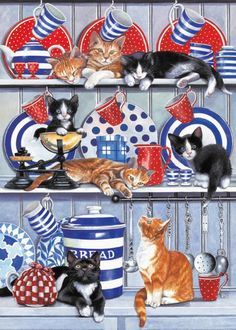 Kitchen Cats - Chrissie Snelling