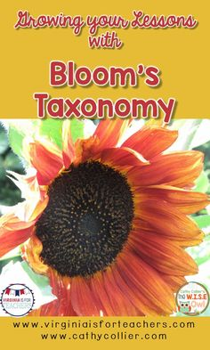 """The standards have """"upped the rigor"""", but have you? This Bloom's FREEBIE will…"""
