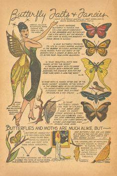Vintage Comics, Vintage Posters, Vintage Art, Wall Prints, Poster Prints, Poster Wall, Photo Wall Collage, Collage Art, Photowall Ideas
