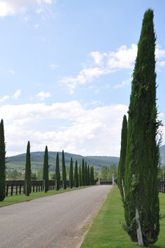 Relais & Chateaux - In this superb 700 hectare Tuscan estate, time would appear to have stood still. This magnificently restored property belonging to the Ferragamo family is an oasis of charm in the image of a mediaeval village with its 19th century villa, farm and farm buildings. Il borro ITALY #relaischateaux #garden