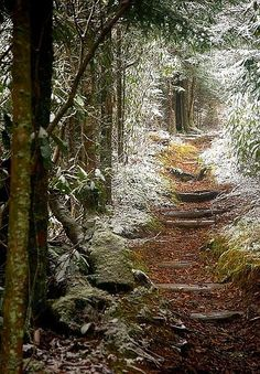 Smokey Mountain Trail, Tennessee