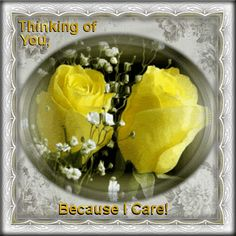 Show you care by sending these beautiful roses to anyone. Free online Because I Care ecards on Everyday Cards Morning Hugs, Morning Wish, Healing Wish, Have A Beautiful Day, Beautiful Roses, Beautiful Things, 123 Greetings, Miss You Images, Day And Nite