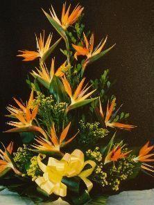 Selecting The Flower Arrangement For Church Weddings – Bridezilla Flowers Tropical Flower Arrangements, Funeral Flower Arrangements, Beautiful Flower Arrangements, Unique Flowers, Large Flowers, Tropical Flowers, Beautiful Flowers, Blue Flowers, Altar Flowers
