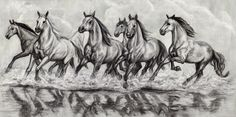 Horses Running Through Water - Charcoal on paper. 45 x 90 cm.  I drew these horses as a charcoal mock up for a commissioned painting double this size. I toned the Fabriano paper with diluted grey acrylic paint, and then used vine and compressed charcoal. I used oil pastel for the whites as fixative tends to dull chalk highlights.