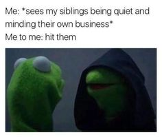 21 Memes About the Pains of Growing Up With Siblings - Funny Moments World Funny Kermit Memes, Really Funny Memes, Stupid Funny Memes, Funny Relatable Memes, Funny Tweets, Funny Fails, Haha Funny, Funny Stuff, Funny Things