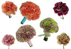 New Carnations and How To Create Faux Peonies! Like this.