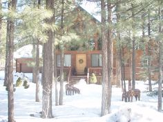 Keely Cabin vacation rental in Pinetop-Lakeside from VRBO.com! #vacation #rental #travel #vrbo
