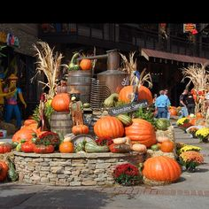 Gatlinburg, TN, in October --- I've been here many times and have enjoyed it each time!!