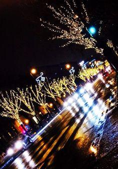 City lights Christmas Budapest street evening