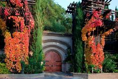 Rutherford Hill Winery. To learn more about #SanFrancisco | #NapaValley click here: http://www.greatwinecapitals.com/capitals/san-francisco-napa-valley #TravelDestinationsUsaNapaValley