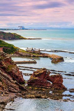 Berwickshire Coastal Path, the path where Scotland becomes England. #Scotland #England