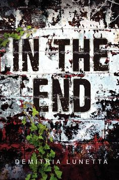 Em: In The End by Demitria Lunetta - BOOK REVIEW - Sash and Em: A Tale of Two Bookies
