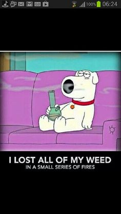 Growing marijuana from clones is one of the ways to grow marijuana. Cloning cannabis is a faster and more effective way of growing identical buds produced from one mother plant. This grow journal chronicles a grower's first attempt in growing cannabis. Weed Humor, Medical Marijuana, 420 Memes, Funny Memes, Smoking Weed, Weed, Backgrounds, Cartoons, Caricatures