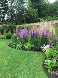 Amazing Garden Decoration Ideas for Your Home - Diy Garden Projects Amazing Gardens, Beautiful Gardens, Beautiful Flowers, Garden Cottage, Cottage Front Yard, Home And Garden, Landscape Designs, Landscape Architecture, Landscape Stairs