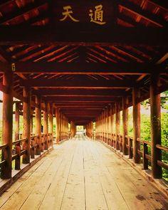 *ひとり旅・京都* . 2016 . 9 . 19 東福寺より📷 通天橋 . 憧れの通天橋にやってきた~ヽ(´I `*)/♪ 素晴らしい! . #東福寺 #寺 #通天橋 #京都 #ひとり旅 #tofukuji#temple #zentemple #tsutenkyo #woodenbridge #kyoto #japan #trip #travel