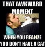 This Actually Happened To Me But In Reverse.  My Kitty Snuck Into The Neighbors Place & Got In Bed With Her!!