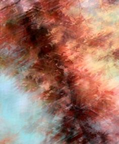 Red Leaves Oak Tree Abstract Nature by hockmanphotography on Etsy, $45.00