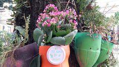 A ação Natal da Vila vai fazer intervenções em mais de 200 postes na Vila Madalena, unindo o grafite com as jardineiras de garrafa PET do Flores no Cimento.