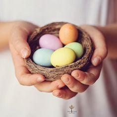 Un nido di dolci auguri! by Just a Click {♥ Sara Photography ♥}, via Flickr