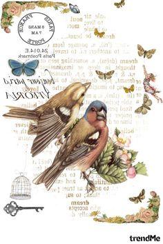 Decoupage Vintage, Vintage Diy, Vintage Labels, Vintage Cards, Vintage Paper, Vintage Postcards, Decoupage On Canvas, Foto Transfer, Transfer Printing