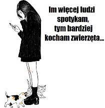 Humor na Stylowi.pl Humor, Memes, Humour, Meme, Funny Photos, Funny Humor, Comedy, Lifting Humor, Jokes