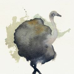 Do you want to buy it? <3 visit my shop https://www.etsy.com/it/listing/517700079/ostrich?ref=shop_home_feat_3 #watercolor #originalart #print #bird #ostrich