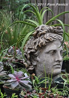 Gardening wisely & beautifully in a hot climate