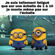 les minions - Page 3 Minion Humour, Minion Jokes, Minions Quotes, Funny Minion, Minions Images, Funny Jokes, Hilarious, Lol, Good Humor
