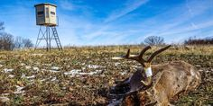 Box blinds will keep you comfortable and concealed and allow you to log more hours in the field, even in the toughest of conditions. Tools And Equipment, Deer Hunting, Wind Turbine, Fields, Blinds, Past, Things To Come, Deer Stands, Seasons