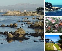 Pacific Grove California.  Lovers Point Park.   Beautiful, over the cliffs  see the blue ocean GORGEOUS Day