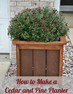 DIY Wood Projects | Show off those beautiful blooms with this DIY cedar and pine planter. Get your FREE plans from Ana White!