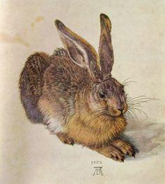 Albrecht Dürer, Young Hare (1502), Albertina, Vienna