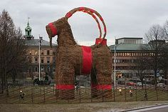 Everyone has different Christmas traditions. Some people build giant straw goats. Other people like to light giant straw goats on fire. And as a swede it's pretty funny when each year there is still some people who think it won't burn down that year XD Funny Cute, The Funny, That's Hilarious, Yule Goat, Haha, Swedish Christmas, Scandinavian Christmas, Vintage Christmas, Funny Tumblr Posts