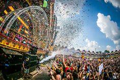 Mad crowd at Tomorrowland 2014!