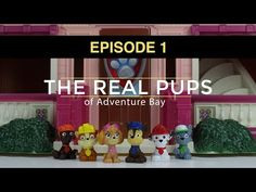 17 Best Paw Patrol Episode Names Images Names Paw
