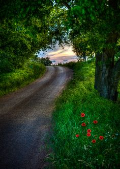 Texas Road by Roy  OBrien - 500px