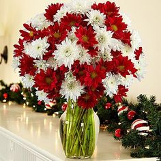 100 Blooms of Christmas Poms – Christmas Flowers, Christmas Gifts, Christmas…