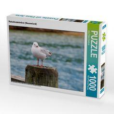 Rotschnabelmöwe (Neuseeland) (Foto-Puzzle)