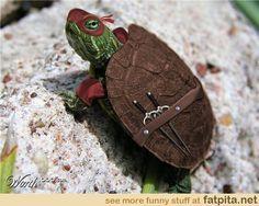 HAHAHA. A Real Ninja Turtle.