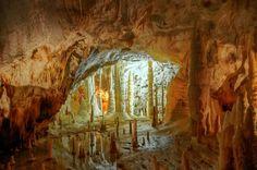 La prima traccia della scoperta più rilevante, quella della Grotta Grande del Vento, si avrà nel giugno 1971, quando Rolando Silvestri e Umberto di Santo, scalando la pendice nord del monte Valmontagnana, scoprirono uno stretto imbocco. Il 25 settembre 1971, Rolando Silvestri, nel corso della spedizione del CAI di Ancona guidata da Giancarlo Cappanera, ritrovò quell'apertura nella montagna da cui usciva un forte getto d'aria, che fece scoprire la porta d'ingresso della grotta, che fu subito…