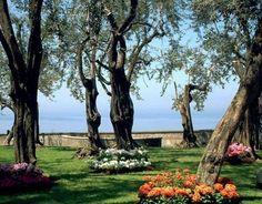 Villa Fondi: wedding venue in Piano di Sorrento