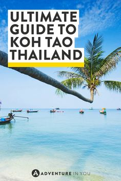 Ahh Koh Tao island in Thailand, the ultimate guide to have an awesome time!