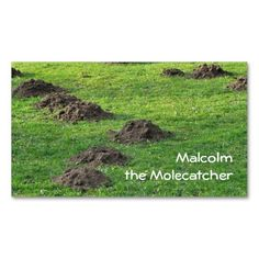 Molehills in a lawn business card template for pest control, lawn or golf course maintenance