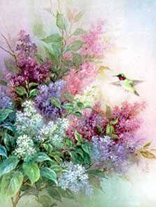 Hummingbird with Lilac