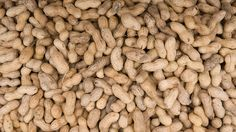 """NYT Article: """"My Son, the Live Peanut Allergy Science Experiement."""""""