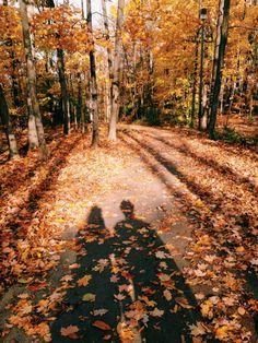 New Nature Autumn Aesthetic 64 Ideas Fall Pictures, Fall Photos, Filles Image Seniors, Autumn Cozy, Autumn Forest, Dark Forest, Autumn Photography, Autumn Aesthetic Photography, Ocean Photography