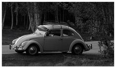 A VW Beetle parked at a bus stop near my home in the spring of 2014